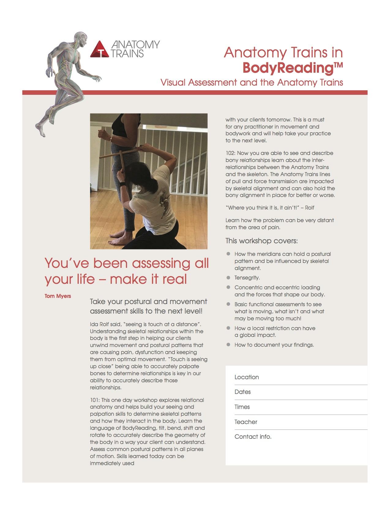 Anatomytrainsbodyreading Pilates Akademie Dortmund